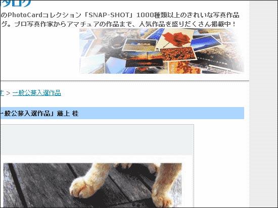 わーいヽ(*゜∀゜*)ノ